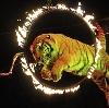 Цирки в Киселевске